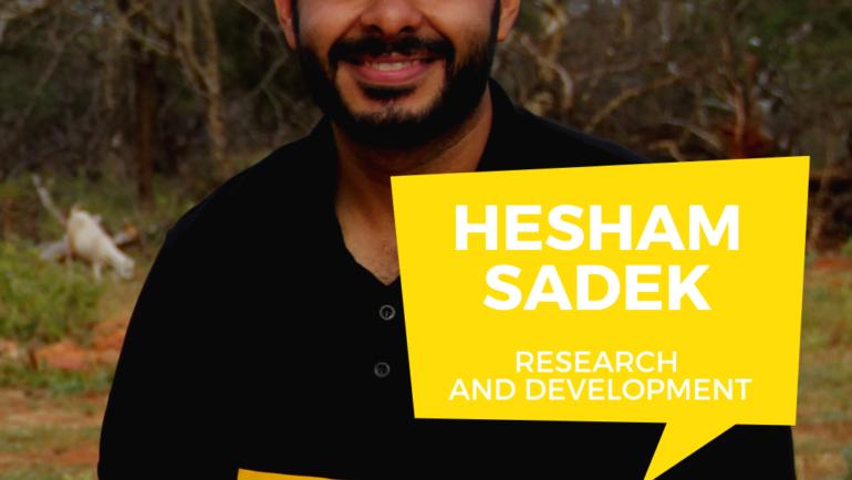 Hesham Sadek